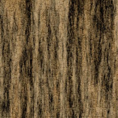 Image 7 du tutoriel sur la texture de l'écorce d'arbre.