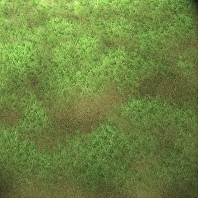 Image final du tutoriel sur la texture de l'herbe.