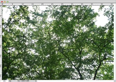 Image de base pour le tutoriel sur la création de forme de pinceau dans Photoshop
