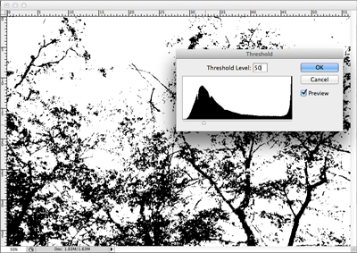 Image de base pour le tutoriel après l'application du seuil.