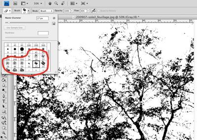 Panneau des formes de gommes disponibles dans Photoshop avec les formes irrégulières de l'outil gomme entourées en rouge.